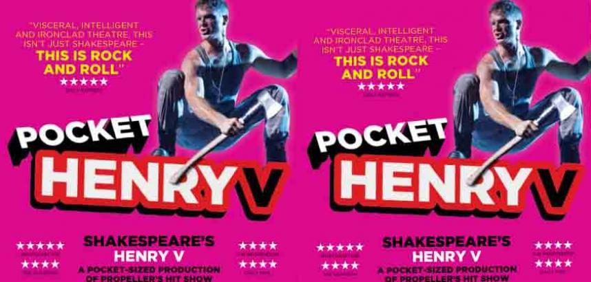 Pocket Henry image