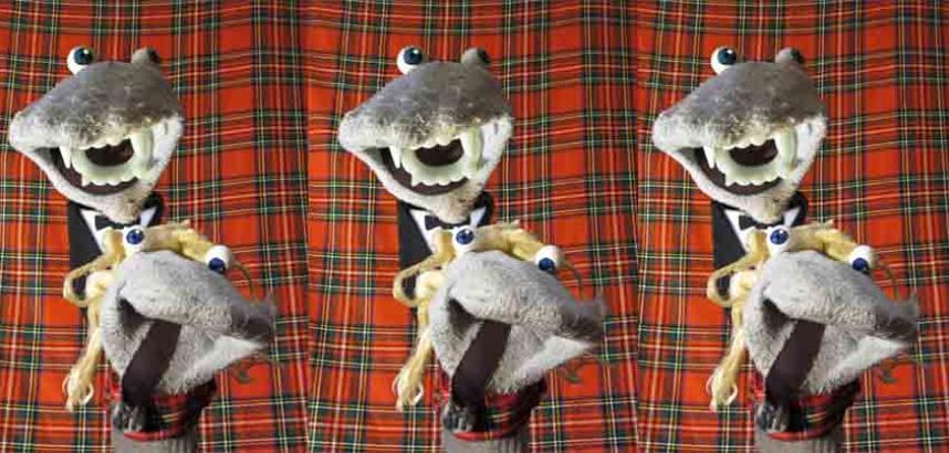 Scottish socks image