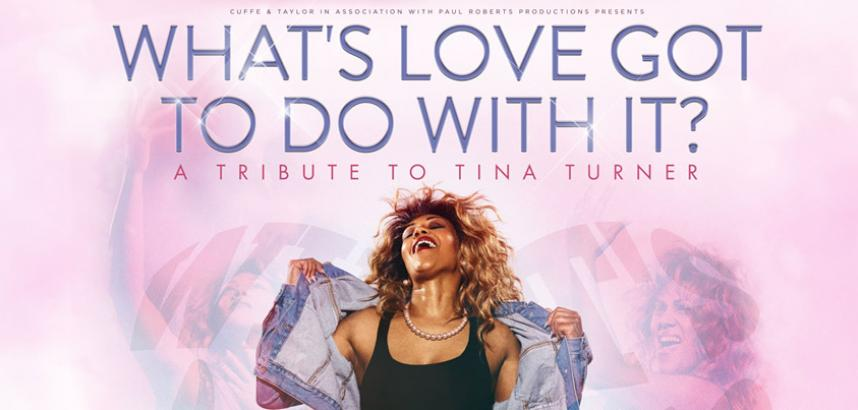 A stylised image of a woman, playing the part of Tina Turner, head thrown back and denim jacket held open reveal an all-black outfit. The show title is also shown.